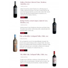 Decanter Recommended Kaiken, Bodega Norton and VIK in their Premium South American Red Blends List